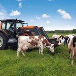 В республике Бурятия ввели новые методы государственной поддержки производителей молока