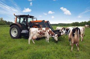 В Бурятии изменили закон о системе господдержки производителей молока.
