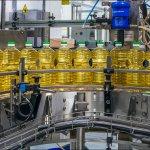 Холдинг НМЖК в Волгоградской области создает производство глубокой переработки семян подсолнечника