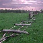 В Московской области активно изымают неиспользуемые земли сельхозназначения