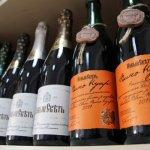 Крымское предприятие «Новый свет» будет выращивать особый виноград