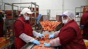 В Дагестане создаются новые мясоперерабатывающие производства