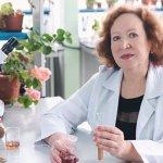Ученые Крыма создали новый биопестицид на основе наноселена