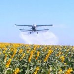 В Орловской области погибли посевы фермеров и дачников