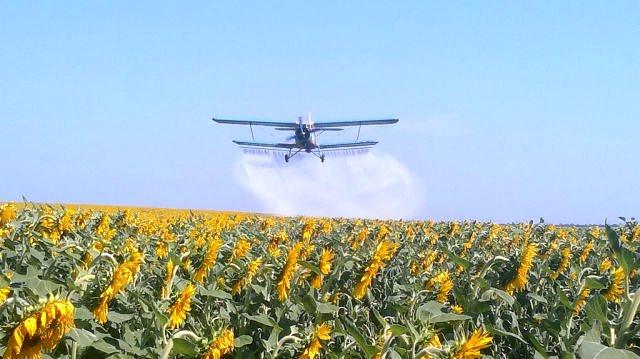 В Орловской области после обработки полей гербициадами погибли всходы на полях фермеров и дачных участках