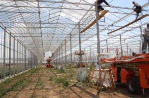 В Дагестане в поселке Шамхал-Терменстроится крупный тепличный комплекс