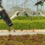 В Рязанской области будет создаваться первый в Российской Федерации  агробиотехнопарк