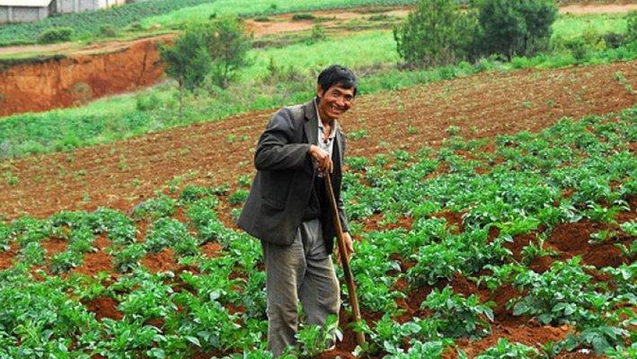 Со следуюиые рабочие не будут трудиться в сельском хозяйстве и лесной отрасли