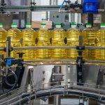 Внешэкономбанк России выделит средства на модернизацию элеватора башкирского агрохолдинга «Сигма»