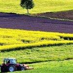 Банк сельскохозяйственных земель создадут в Сибири