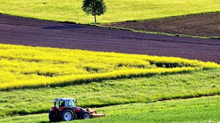В Сибири появится банк земель сельхозназначения