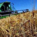 Российские сельхозпроизводители просят оставить в действии Программу №1432