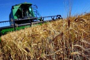 Сельхозпроизводители России просят правительство оставить программу №1432