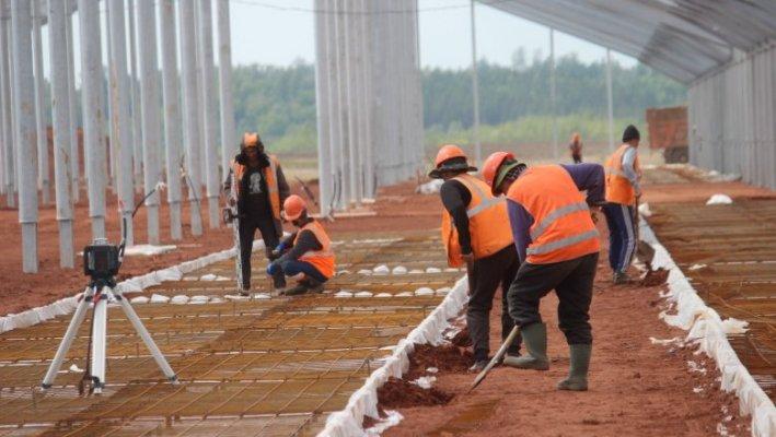Эконива построит в Оренбургской области новые молочные комплексы