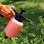 Компания «Шанс Энтерпрайз» этой осенью на площадке ОЭЗ «Липецк»  запустит новое производство средств по защите растений