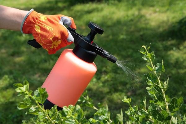 В Липецкой области осенью начнет работать завод по производству средств защиты растений