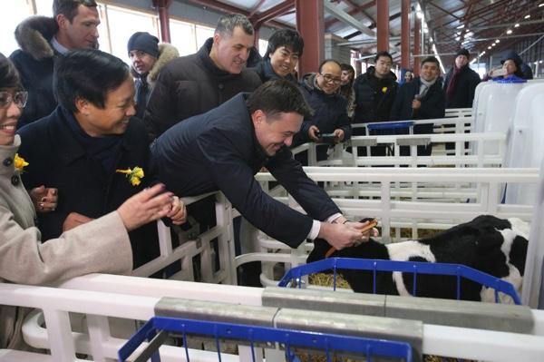 В Тюменской области вьетнамская компания намерена создать крупный молочно-товарный комплекс