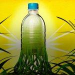 В Липецкой области создается производство биоразлагаемой тары