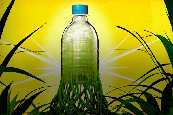 В Липецкой области построят завод по производству биопластика