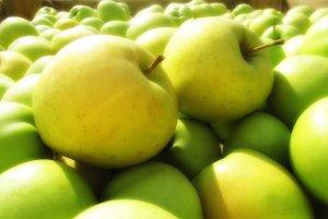 Российские садоводы могут обеспечить внутренний рынок собственными яблоками