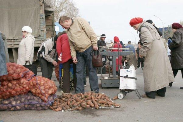 Сохранять урожай картофеля фермеру Омской области помлгант новое картофелехранилище помогает новое картофелехранилище
