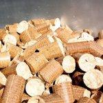 Агрохолдинг «Экоойл» к началу следующего в два раза увеличит производство подсолнечного масла