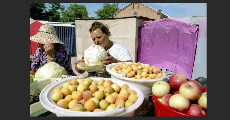 В Московской области садоводам и дачникам на рынках региона предоставляются бесплатные и льготные места для реализации своей продукции