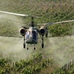 Посадки ореха в Абхазии обрабатывают с помощью малой авиации
