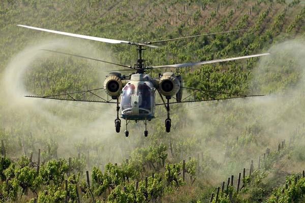 В Абхазии используют вертолет для обработки посадок фундука