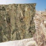 В Томской области нашли замену калийным удобрениям