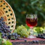 Виноградари Крыма просят ограничить импорт винограда столовых сортов  в Россию