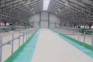 В Великом Устюге открылась новая ферма