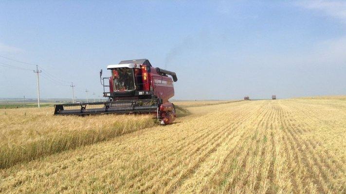 ПРодимекс завершил уборку озимых зерновых культур