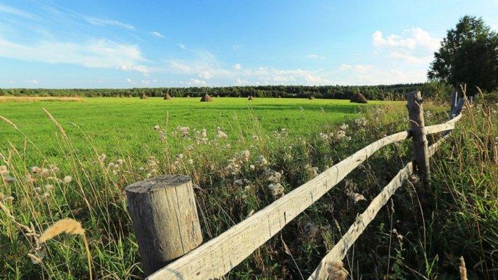 С 1 апреля в Вологодской области можно получить землю в собственность и бесплатно