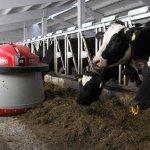 В Республике Удмуртия строится очередная роботизированная ферма