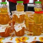 На Крымском полуострове в Севастополе прошел седьмой ежегодный съезд пчеловодов