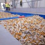 В Ставропольском крае ввели в эксплуатацию завод по производству семян