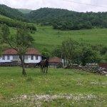 В горных селах Северной Осетии будут развивать агротуризм и скотоводство