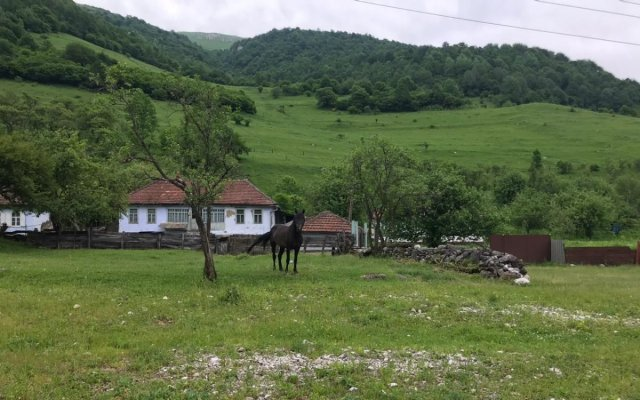 Горные села Северной Осетии будут возрождаться за счет агротуризма и развития животноводства