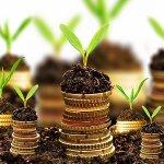 Законодатели Новосибирской области вводят новые формы господдержки для местных сельхозпроизводителей