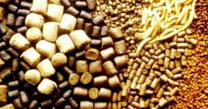За импортные корма, купленные до 1 апреля 2019 года ФТС требует заплатить разницу в НДС