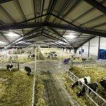 В Республике Удмуртия завершается строительство крупного молочного комплекса