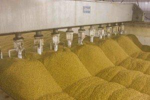 """Компания """"Зерно Жизни"""" расшияет мощности зерноочистительного завода"""