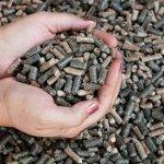 Венгерская компания намерена построить в Воронежской области два кормозавода
