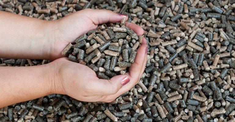 Производством шрота из сои и подсолнечника займется на территории Воронежской области венгерских холдинг UB Merchants