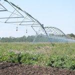 Правительство Ставропольского края в текущем году выделяет на мелиорацию земель 370 миллионов рублей