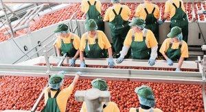 Астраханская томатная паста вытесняет с российского рынка зарубежную продукцию
