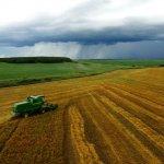 Дальний Восток стал больше производить собственных сельскохозяйственных продуктов