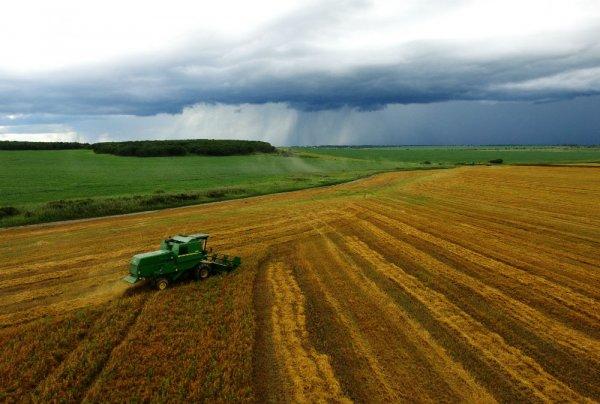 Регионы Дальнего Востока увеличивают призводсьво собственных сельхозпродуктов