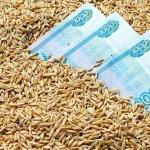 Сельхозпроизводители Нижегородской области увеличили экспорт картофеля и макарон